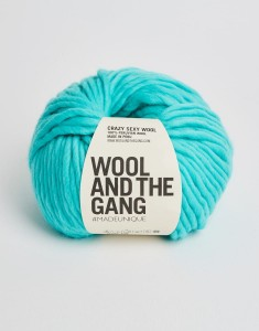 WATG - Crazy Sexy Wool - Magic Mint