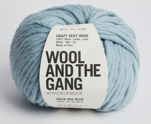 WATG - Crazy Sexy Wool - Duck Egg Blue